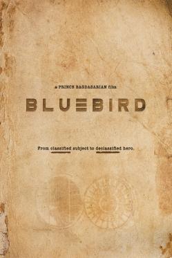 Bluebird_1